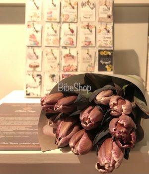 VIP tulipán 'Brownie'