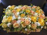 Vegyes virágboxok