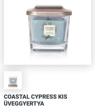 Kis Elevation Coastal cypress