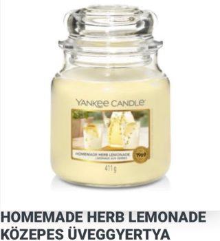 Közepes Homemade herb lemonade