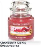 Kis üveggyertya Cranberry Ice