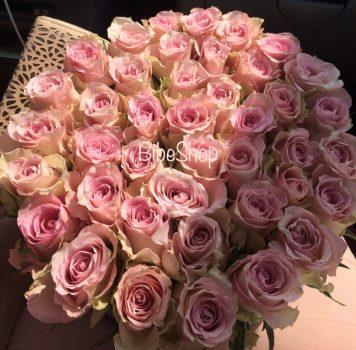 rózsabox rozsaszín