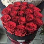 rózsabox bordó